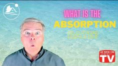 What is the Absorption Rate?